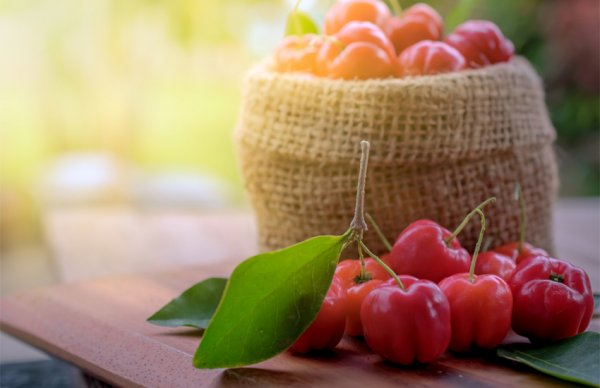 ACEROLA-Kirschen, reines Fruchtpulver, Vitamin C